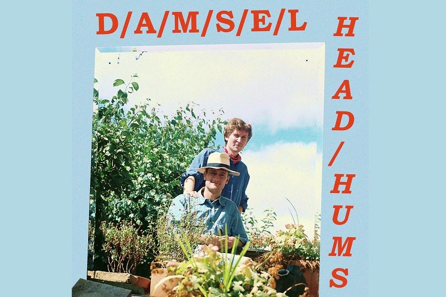 Damsel Share 'Head Hums'