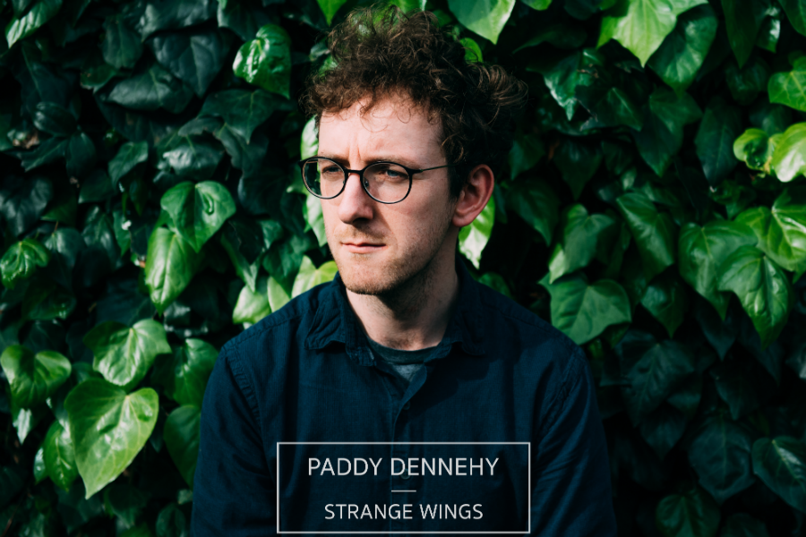 Paddy Dennehy Releases Debut Album
